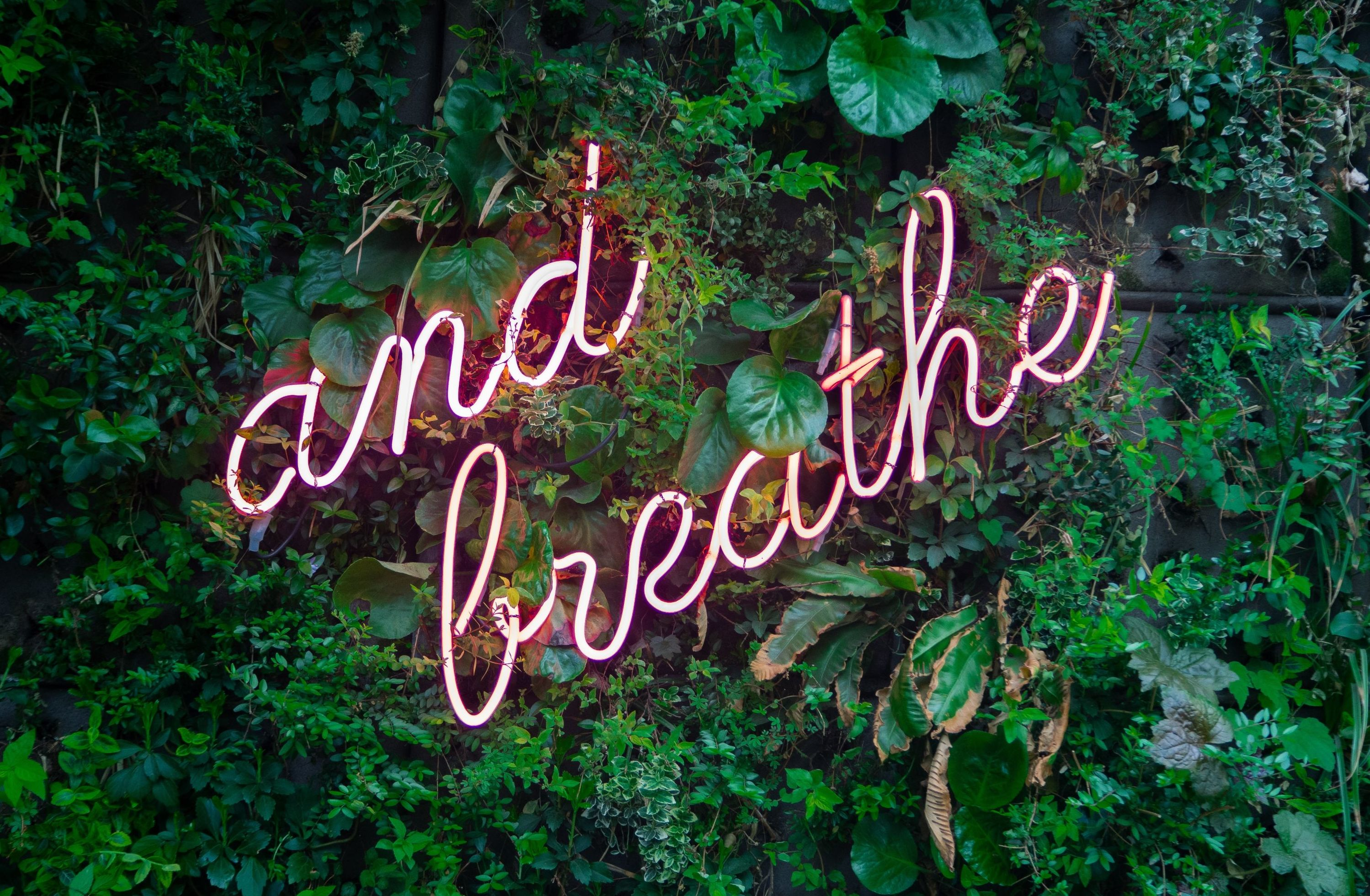 ...and breath